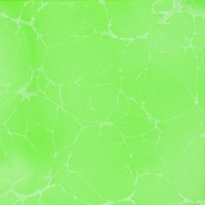 Polycol 450 zelená perleť.jpg